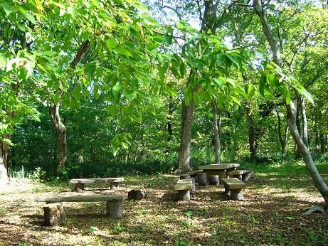 青葉公園 テーブルとイス.jpg