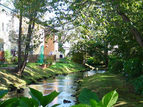 ママチ川 家の裏を流れる.jpg