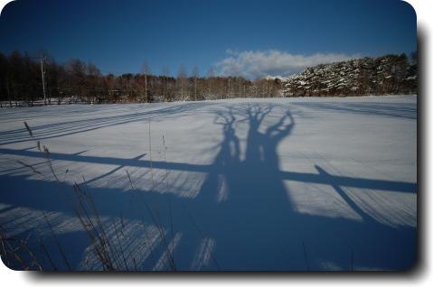 雪原に伸びる影