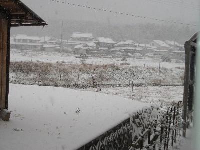2010年12月31日 丹波市につもる雪
