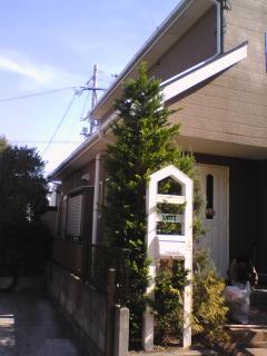 2008_0201_072.jpg
