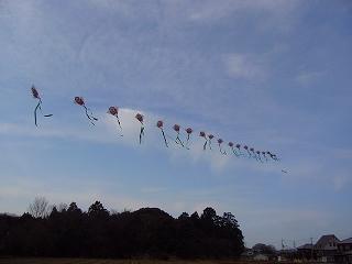 2007正月凧揚げ