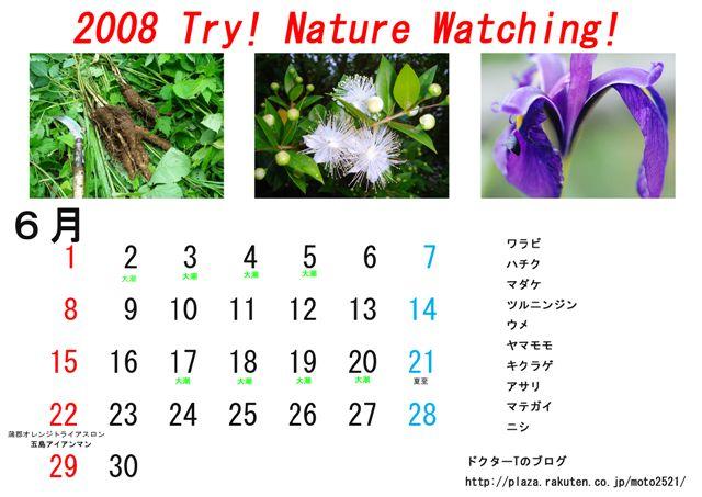 カレンダー6月のコピー.jpg