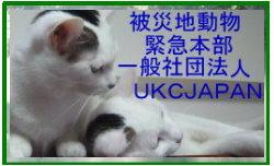 UKCバーナーラスト.jpg