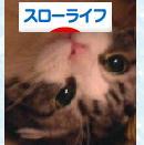 のあラスト.jpg
