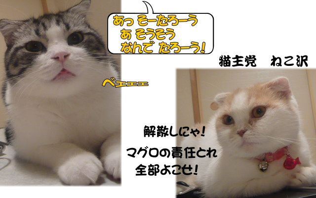 のあ&ふうべぇぇ.jpg