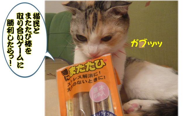 こりん猫民.jpg