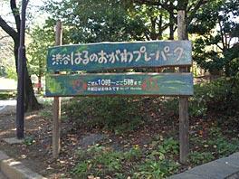 091204park.jpg