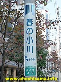 091207harunoogawa.jpg