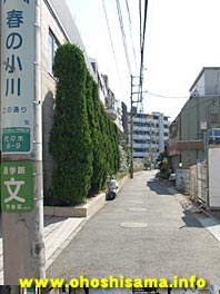 091208harunoogawa.jpg