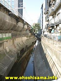 091212shibuyagawa.jpg