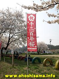 千二百年桜