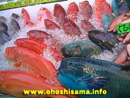 市場で売られている魚