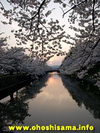 上杉神社の桜と夕陽