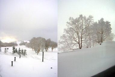 ウィンザースノービレッジと樹氷