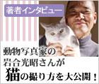動物写真家の岩合光昭さんが猫の撮り方を大公開!