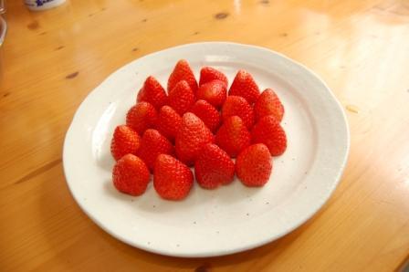 美味しそうな苺.JPG