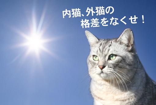 sima_kakusa_small.jpg