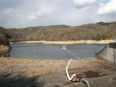 200901Takamefu001s