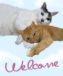 muta-welcome.jpg