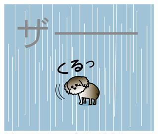 ななちゃん5.jpg