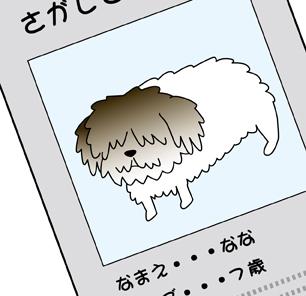 ななちゃん8.jpg