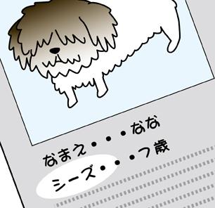 ななちゃん9.jpg