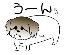 ななちゃん2.jpg