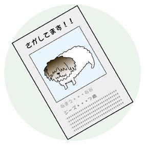 ななちゃん7**.jpg