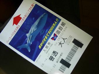 海遊館入場券.JPG