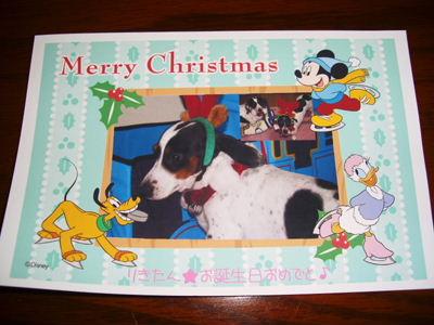 クリスマスカード☆