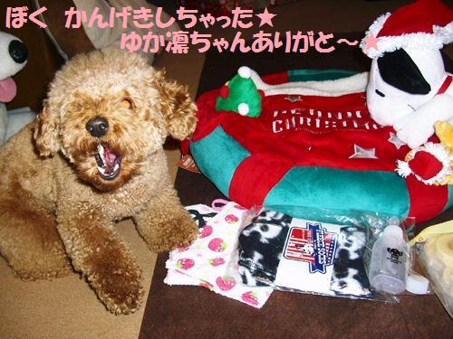 プレゼント♪