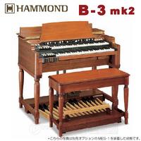 h1_b-3mk2_1.jpg