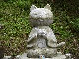 s-猫寺の和尚さん.jpg