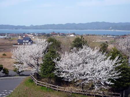 大塚山公園1