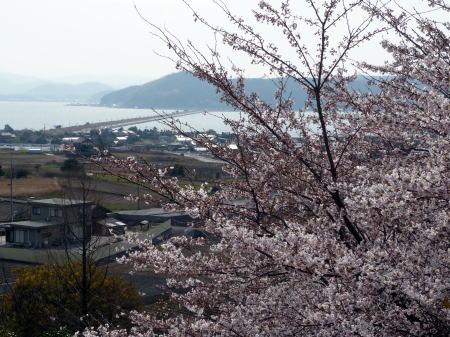 大塚山公園3