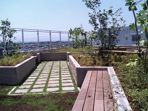 タマプラ屋上庭園070726.jpg