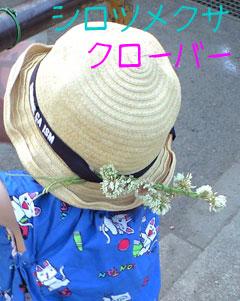 CA3A0665.jpg