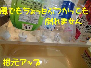 CA3A3290.jpg