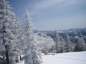 よなよなの里スキーその1志賀高原