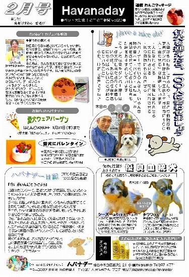 ニューズレター2月号.jpg
