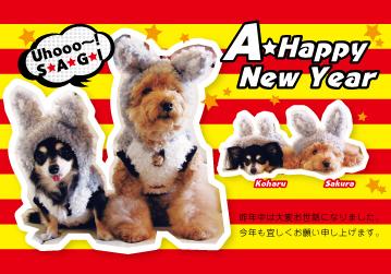 年賀状2011兎