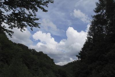 平成22年7月 岩手県北の旅2