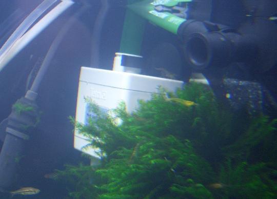 設置した水中モーター 11,23