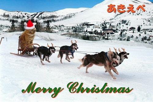 メリークリスマス(小)