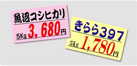 プライスカード.jpg