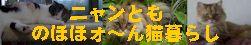 ニャンとも のほほォ~ん猫暮らし