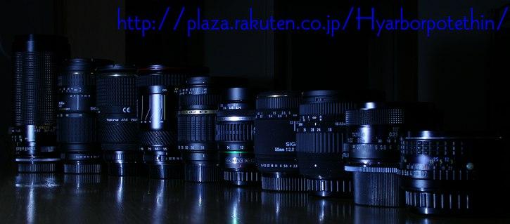 IMGP3883v.jpg