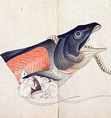 北斎館 塩鮭と鼠