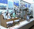鳥の博物館(特設 飛騨高山の老田コレクション)